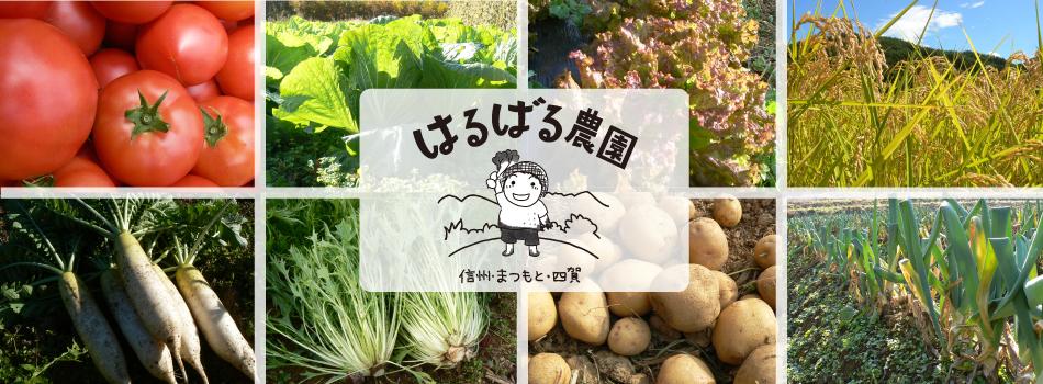 はるばる農園:ほっとするおいしさ。無農薬、無化学肥料、有機栽培の野菜とお米を、信州・松本から。/