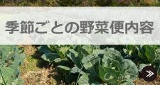 季節ごとの野菜便内容